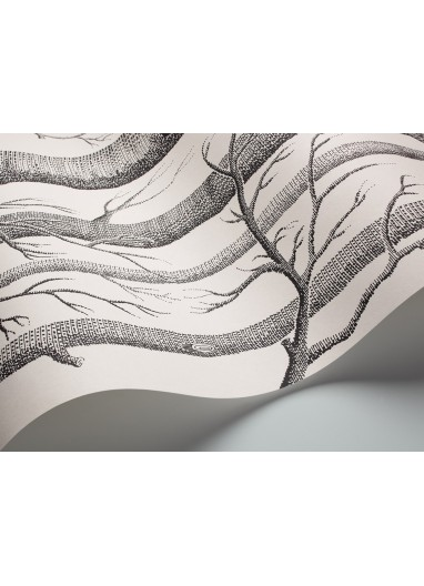 Papel pintado Woods Cole & Son