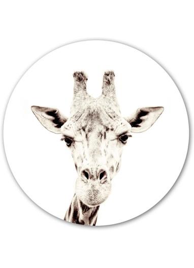 Vinilo magnetico girafa